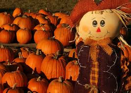 Pumpkin Patches Around Atlanta, Scenic Fall Drives, Fall Festivals & Haunted Houses