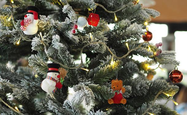 Preserve Your Christmas Tree